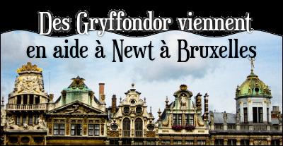 http://journal-gryffondor.poudlard12.com/public/Aaliya/GT_74/_Des_Gryffondor_viennent_en_aide_a_Newt_a_Bruxelles.png