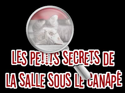 http://journal-gryffondor.poudlard12.com/public/Amy/GT_50/Les_petits_secrets_de_la_salle_sous_le_canape.png