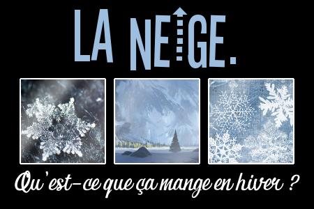 http://journal-gryffondor.poudlard12.com/public/Amy/GT_62/la_neige__qu_est-ce_que_ca_mange_en_hiver.png