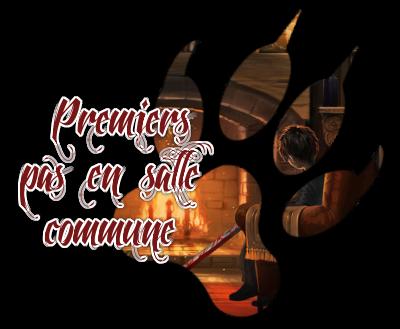 http://journal-gryffondor.poudlard12.com/public/Amy/GT_64/_Premiers_pas_en_salle_commune.png