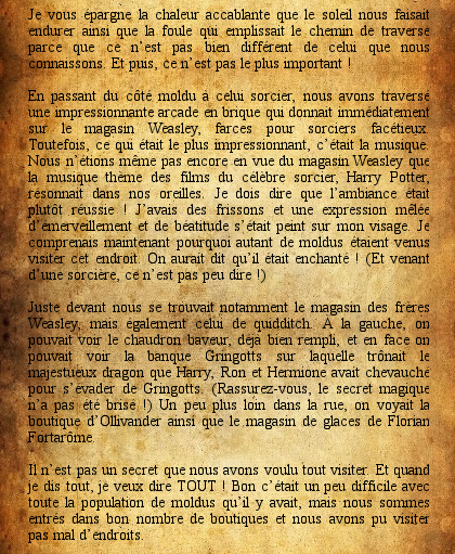 http://journal-gryffondor.poudlard12.com/public/Amy/GT_66/journal_de_bord2.png