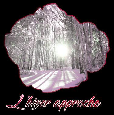 http://journal-gryffondor.poudlard12.com/public/Ariane/GT_58/lhiver.png