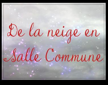 http://journal-gryffondor.poudlard12.com/public/Charlie/GT_47/De_la_neige_en_Salle_Commune.png