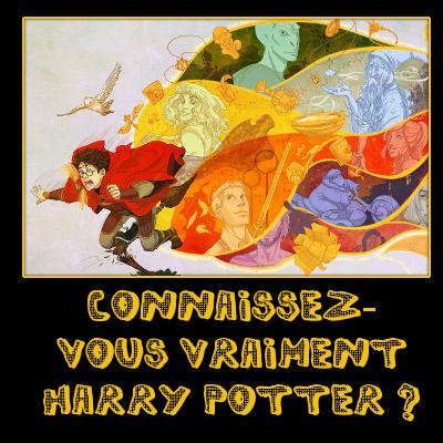 http://journal-gryffondor.poudlard12.com/public/Ginny/GT_37/Connaissez-vous_vraiment_Harry_Potter.png