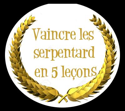 http://journal-gryffondor.poudlard12.com/public/Ginny/GT_37/vaincre_les_Serpentard_en_5_lecons.png