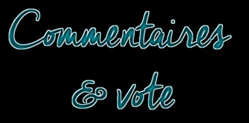 http://journal-gryffondor.poudlard12.com/public/GinnyL/GT_38/Commentaires_et_vote.png