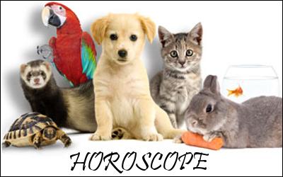 http://journal-gryffondor.poudlard12.com/public/Tchoucra/GT_45/Horoscope45.png