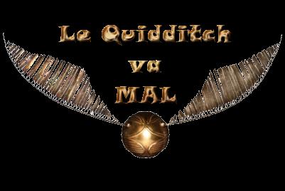 http://journal-gryffondor.poudlard12.com/public/Tchoucra/GT_49/lequidditchvamal.png