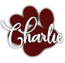 http://journal-gryffondor.poudlard12.com/public/_sceaux/L_equipe/Charlie.png